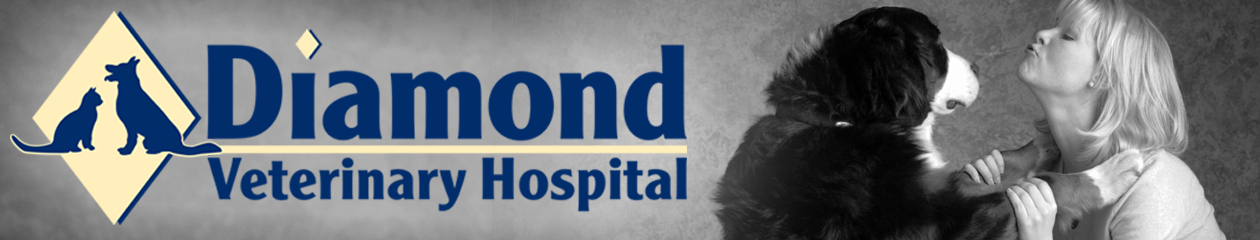 Diamond Veterinary Hospital (301) 869-3990